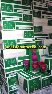 Kurma Date Crown Distributor